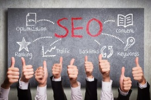 how stay updated regularly on SEO trends